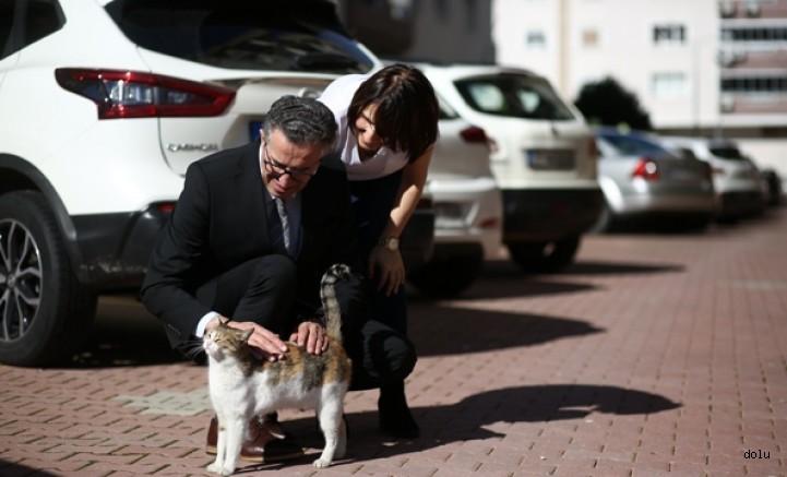 """CHP Gaziemir Belediye Başkan Adayı Halil ARDA'nın yaşadığı Koru Sitesi """"Sokak Hayvanları Dostu"""""""