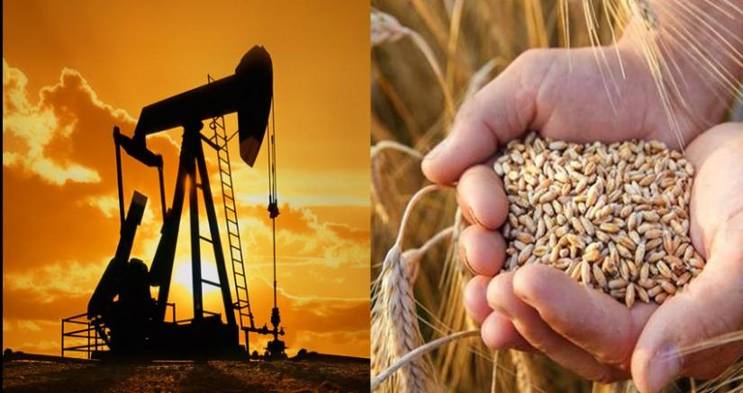 Rekor: Buğdayın Fiyatı Petrolü Geçti!