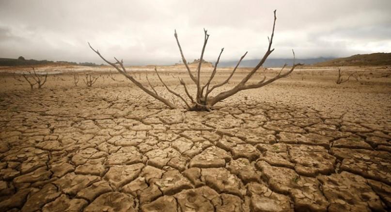 Tarım Bakanlığı Harekete Geçti, Kuraklığa Karşı 48 İlde Kritik Hamle!