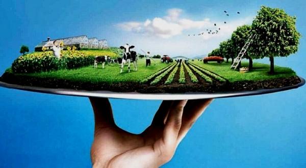 Tarımsal Üretim İçin Faizsiz Ve Düşük Faizli Kredi Kullanım Esaslarını Açıklandı